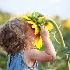 Fotolia-girl_smelling_sunflower