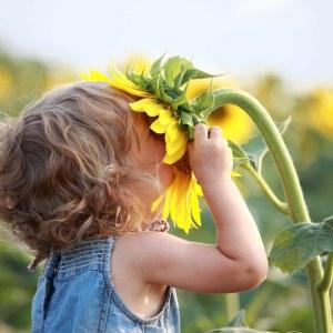 Fotolia-girl_smelling_sunflower