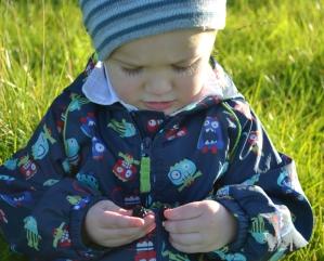 child BlackberryPicking