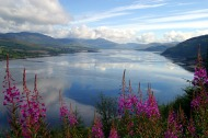 Ireland_Wicklow-Mountains_2825