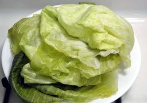 cabbage_leaves 1