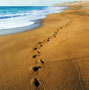 Steps-in-Sand